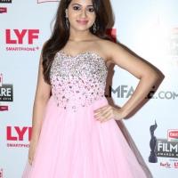 63rd Britannia Filmfare Awards South Photos (12)