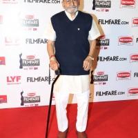 63rd Britannia Filmfare Awards South Photos (24)