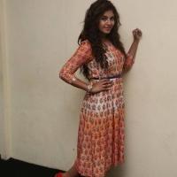 Actress Anjali Latest Stills (3)