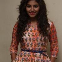 Actress Anjali Latest Stills (8)