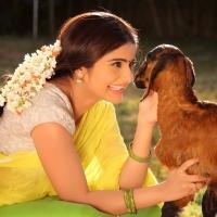 Actress Aqsa Bhatt Photoshoot Photos (11)