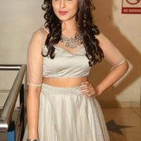 Actress Madhu Shalini Spicy Stills (11)