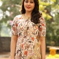 Actress Rashi Khanna New Stills (7)