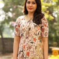 Actress Rashi Khanna New Stills (8)