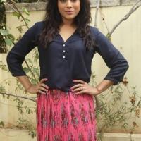 Actress Rashmi Gautam Spicy Stills (3)