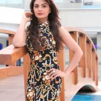 Actress Sandeepa Virk Photo Shoot Images (6)