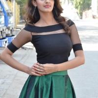Actress Tanishq Rajan New Photos (12)