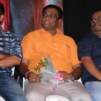 Graghanam Audio Launch Photos (14)
