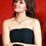 Karuppu Raja Vellai Raja Movie Launch Images (8)
