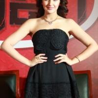 Karuppu Raja Vellai Raja Movie Launch Images (9)