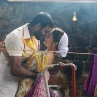 Marudhu Movie Stills (18)