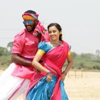 Marudhu Movie Stills (3)