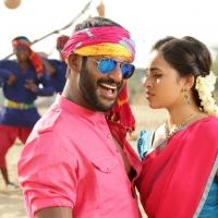 Marudhu Movie Stills (7)
