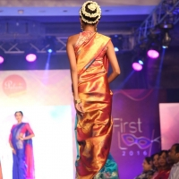 Palam Silks Fashion Show Stills (10)