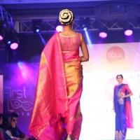 Palam Silks Fashion Show Stills (11)