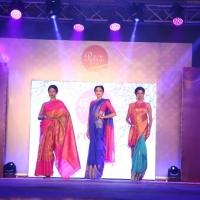 Palam Silks Fashion Show Stills (12)