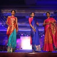 Palam Silks Fashion Show Stills (14)