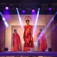 Palam Silks Fashion Show Stills (15)