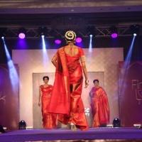 Palam Silks Fashion Show Stills (16)