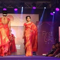 Palam Silks Fashion Show Stills (17)