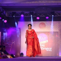 Palam Silks Fashion Show Stills (18)