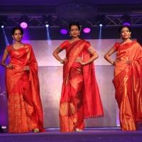Palam Silks Fashion Show Stills (19)