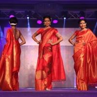 Palam Silks Fashion Show Stills (20)