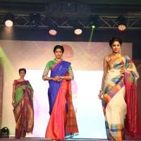 Palam Silks Fashion Show Stills (21)