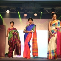 Palam Silks Fashion Show Stills (22)