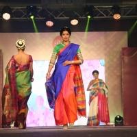 Palam Silks Fashion Show Stills (23)