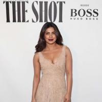 Priyanka Chopra's Unseen BIKINI Pics (37)