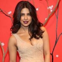 Priyanka Chopra's Unseen BIKINI Pics (42)