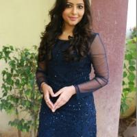 Sei Movie Pooja & Press Meet Photos (16)