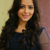 Sei Movie Pooja & Press Meet Photos (8)